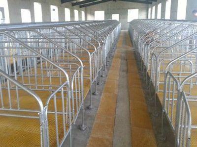 畜牧业养殖场玻璃钢格栅