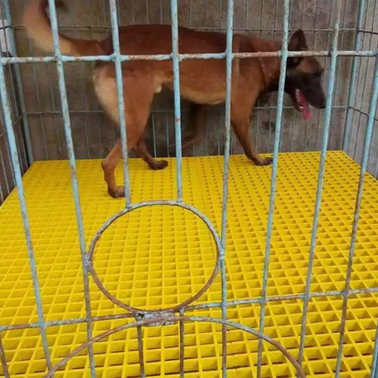 养狗犬舍玻璃钢格栅